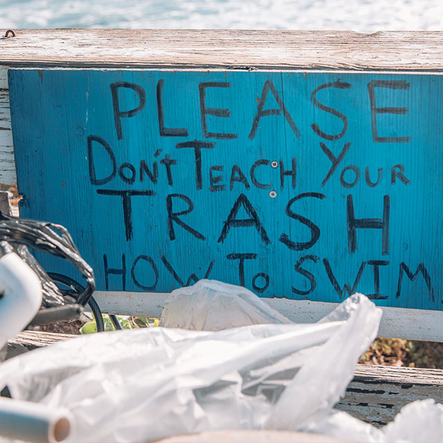 please don't teach your trash how to swim