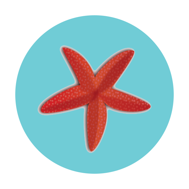 starfish level icon