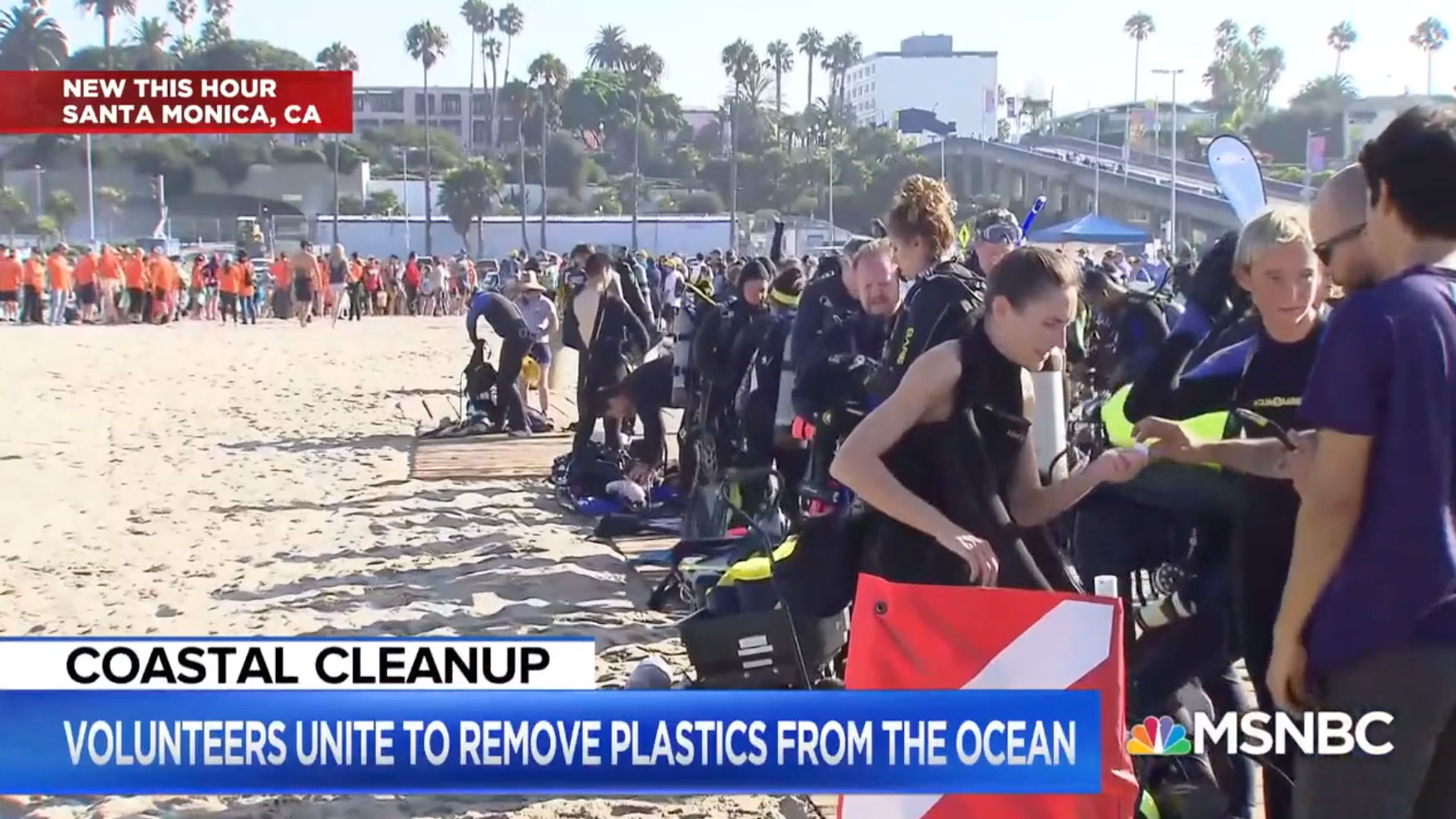 free the ocean msnbc feature
